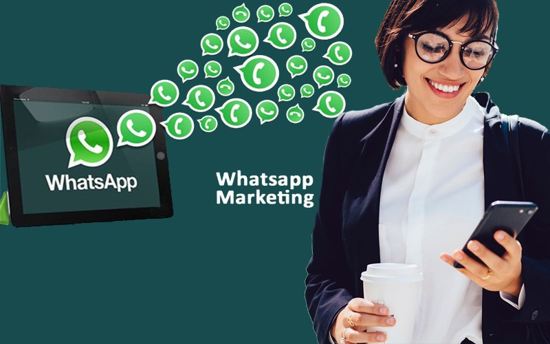 Start your business with WhatsApp marketing software & tools
