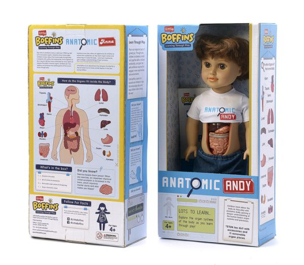 Anatomic-Andy-in-box