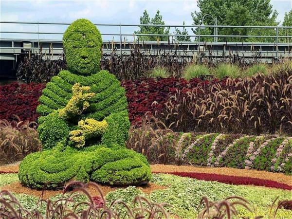 plant-sculpture-20