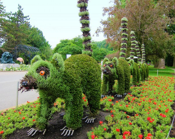 plant-sculptures-in-montral-o