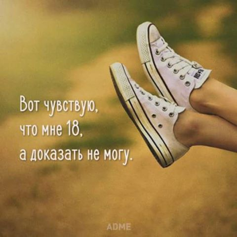14222198_1789925461225397_8323636870811350630_n