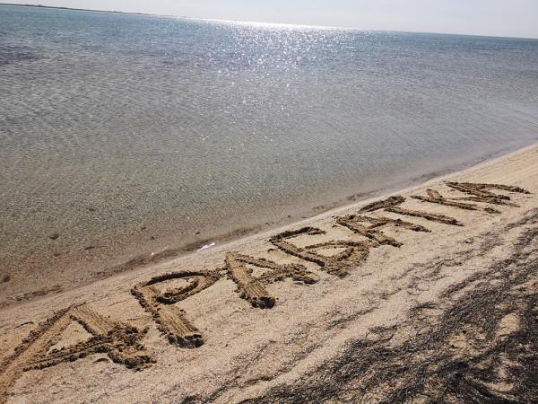 Один мой день на Арабатке