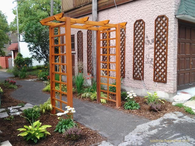city-japan-garden
