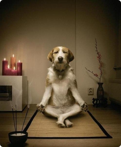 спокойствие и умиротворение
