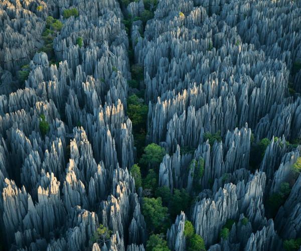 Древние каменные леса или что это на самом деле?..