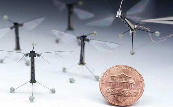 Robots insecten