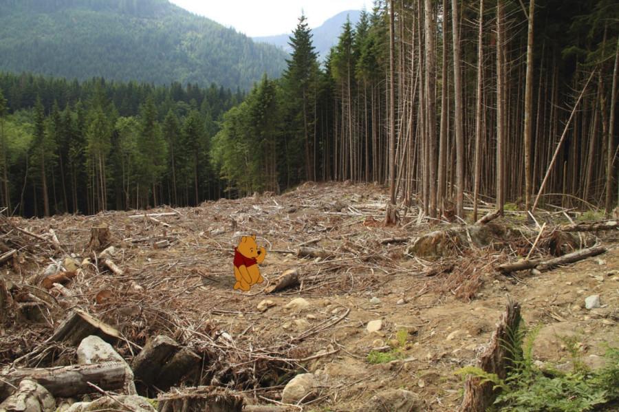 unhappy-pooh