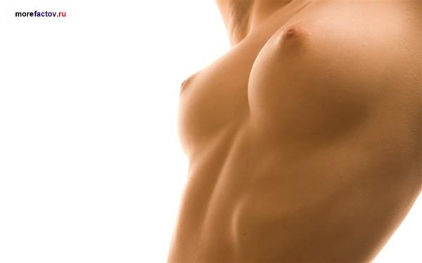 фото красивая голая женская грудь