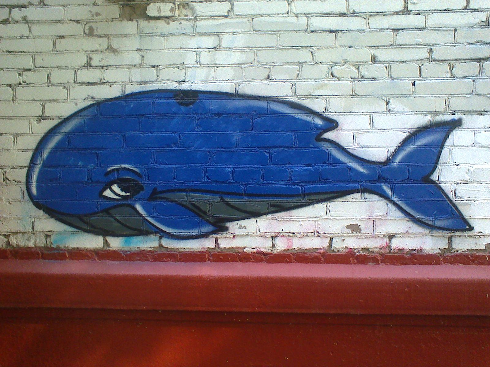 """""""Синий кит"""" в моём районе. Фото: SoLutova"""