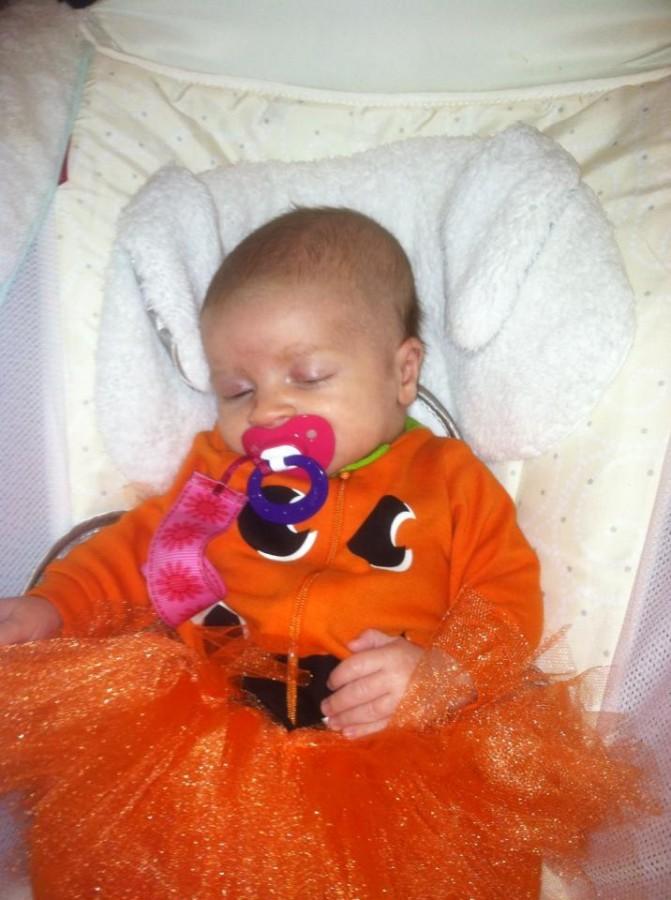 nora pumpkin
