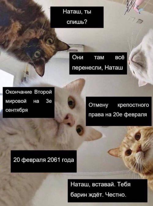 bez-nazvaniya-копия