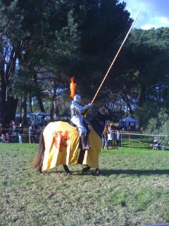 Желтый рыцарь