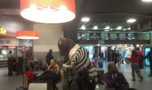 Horse in a zebra outfit at Brussels Midi