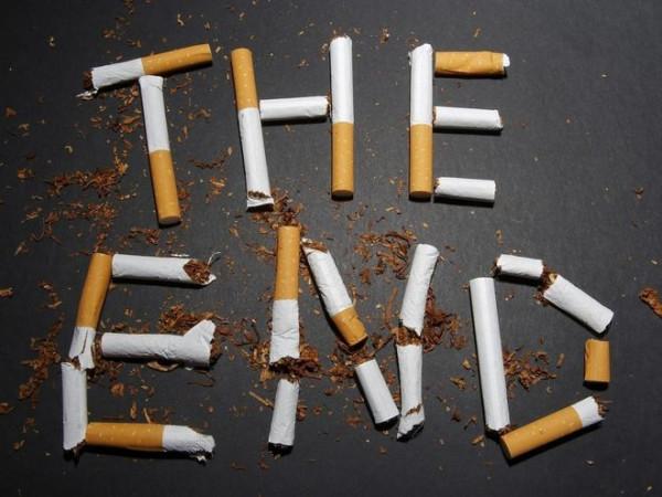 Компании торгующие табачными изделиями сигареты из 90 х купить на авито