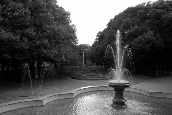 Первомайский парк 26