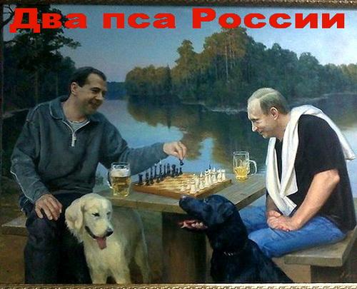 Путин и Медведев - два пса России