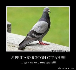 204674-ia_reshaiu_v_etoi_strane_gde_i_na_kogo_mne_srati