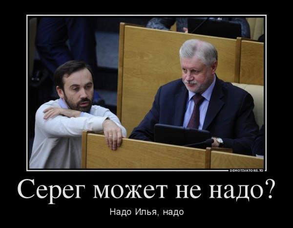 Илья Пономарев, Сергей Миронов, демотиватор
