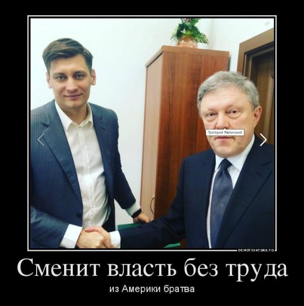 Усы Явлинского настоящие