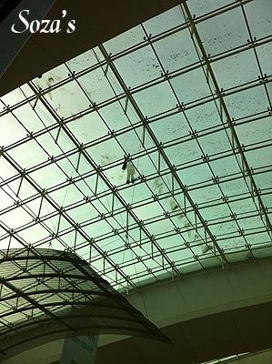 سقف مجمع الأفنيوز