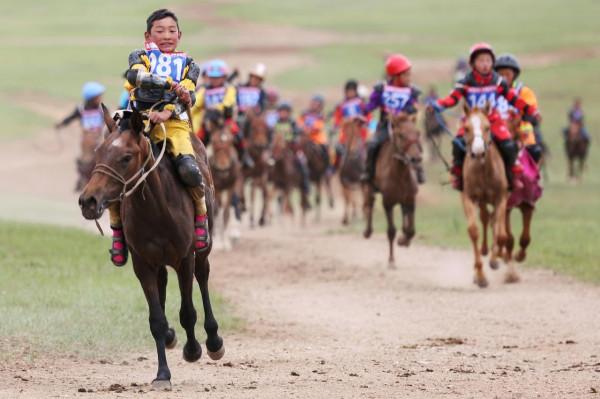 25 HorseRaces.jpg