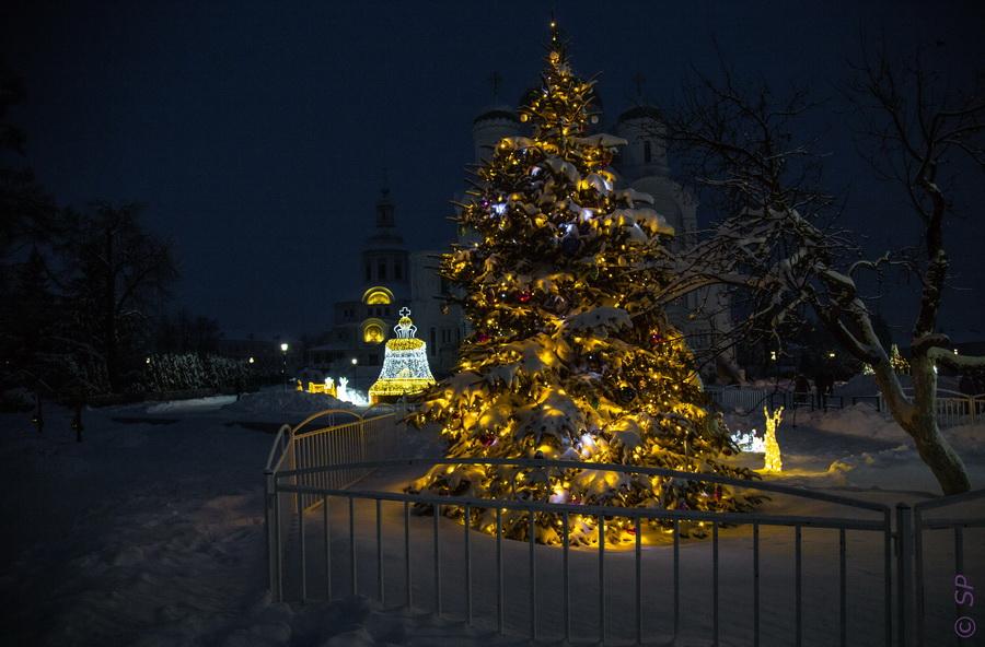 Рождественское Дивеево или село ковидовой эпохи. Визит 3  путешествия