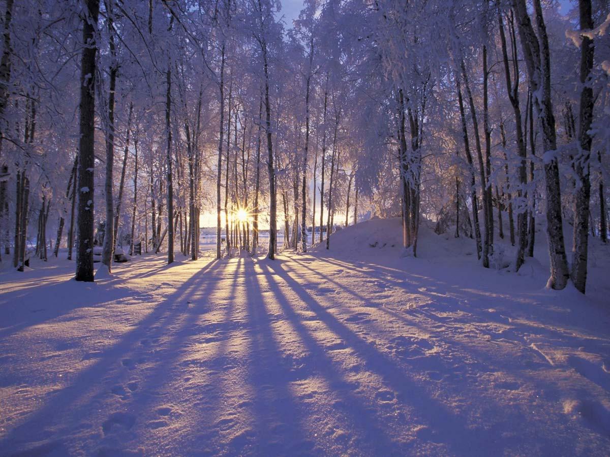 0112_Winter_bw
