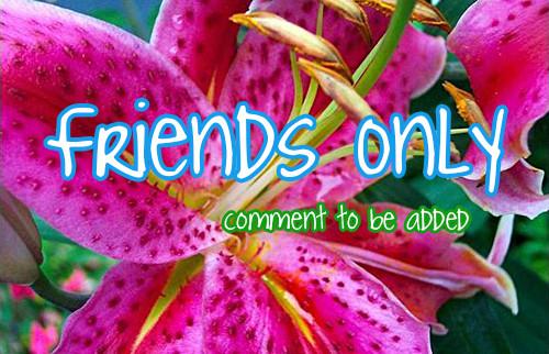 friendonly