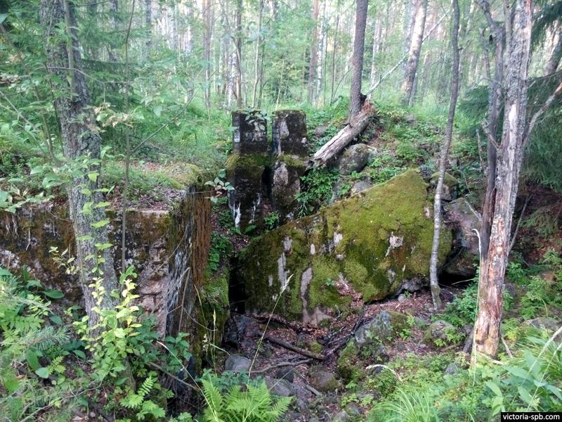 ДОТ Le 6. Укрепрайон Лейпясуо (Leipäsuo). Линия Маннергейма.