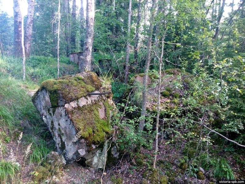 ДОТ Le 7. Укрепрайон Лейпясуо (Leipäsuo). Линия Маннергейма.