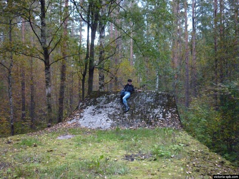 Виктория Бурлакова. Немецкий каземат DL-3 под осадное орудие. п. Новоселье.