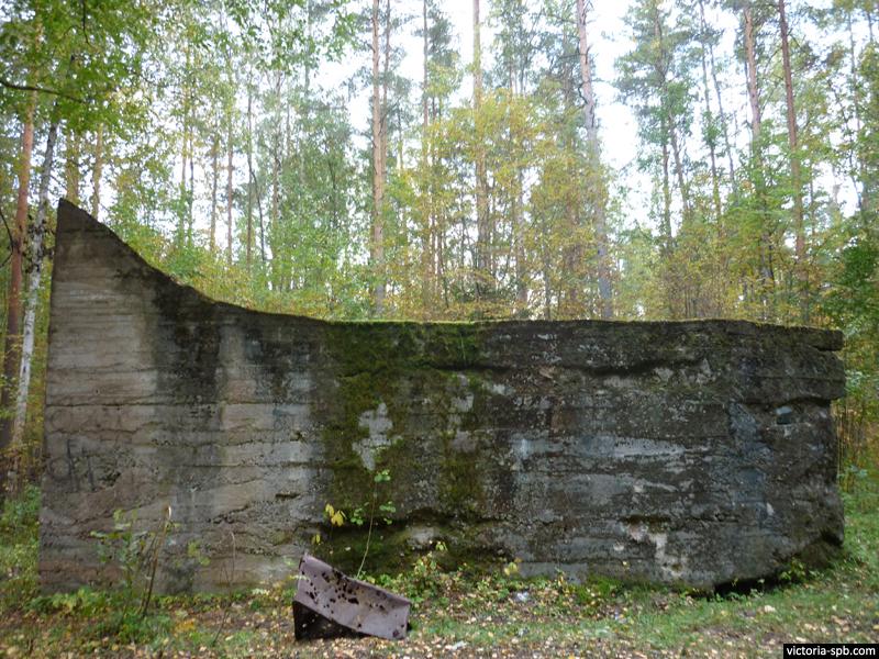 Немецкий каземат DL-3 под осадное орудие. п. Новоселье.