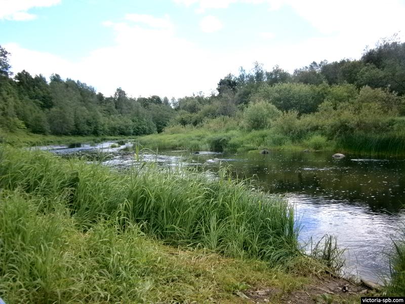 Река Тосна.