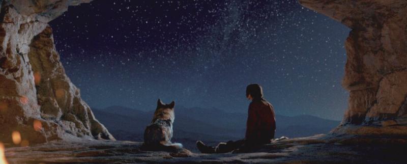 Кадр из фильма «Альфа»