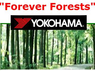Yokohama-Forever-Forest