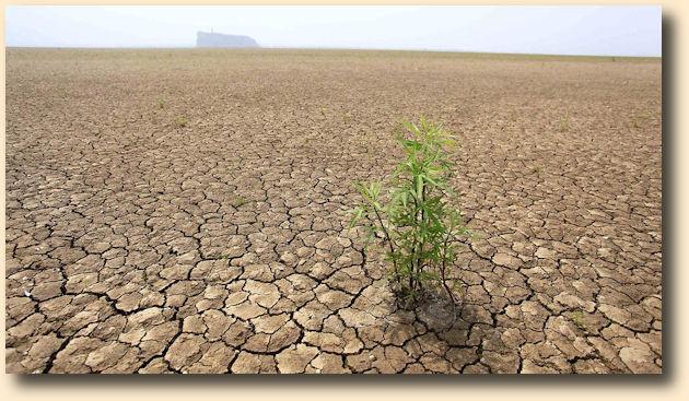 Вооружённые конфликты и массовые миграции Глобального потепления: new_rabochy — LiveJournal