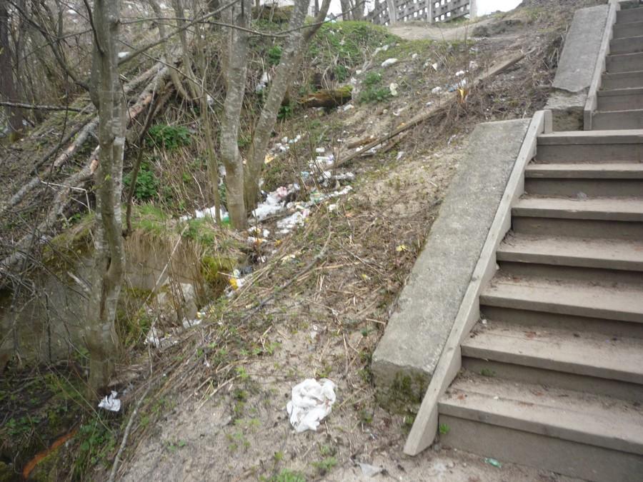 лестница ведущая в парк