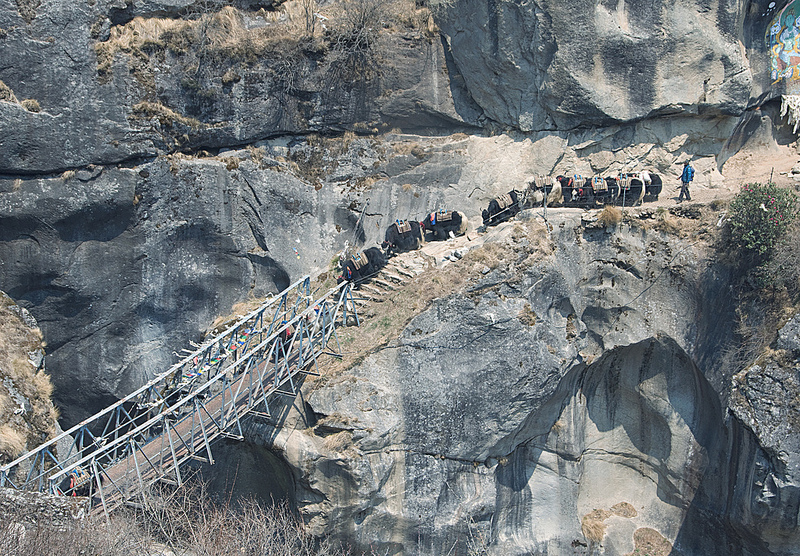 13 - яки переходят через мост в таме