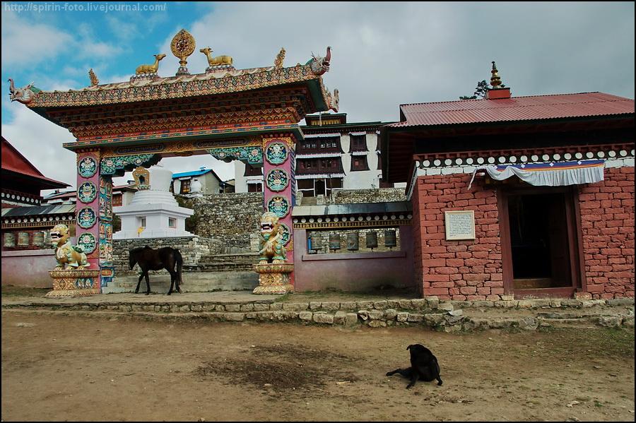 _DSC0313 ворота в монастырь