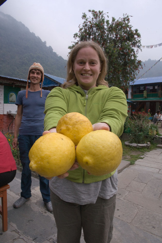 маша и лимоны