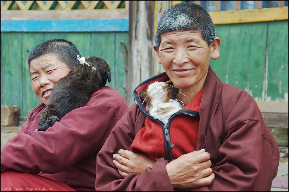 _DSC7188 монашки со щенками