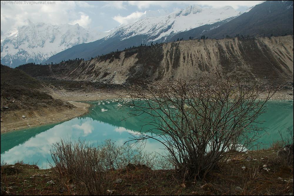 _DSC7321 озеро и куст