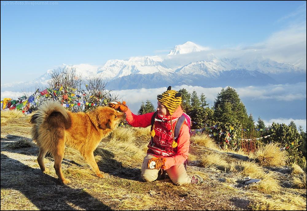 _DSC5457 наташа с собакой