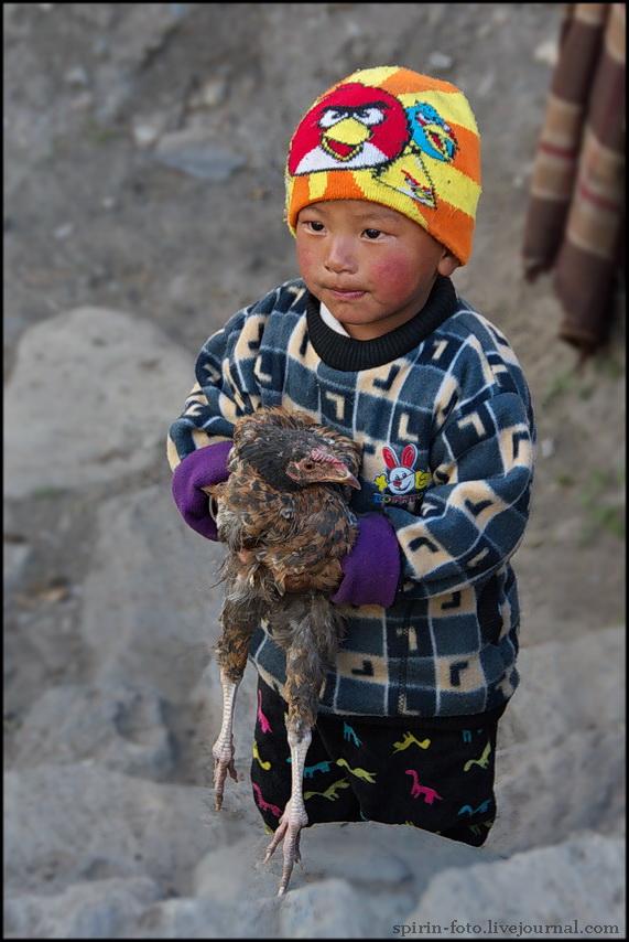 DSC_1270 мальчик с курицей