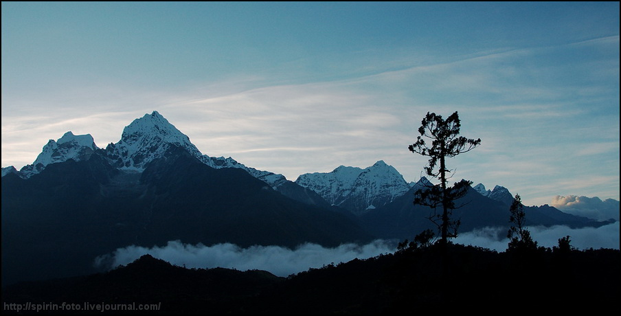 туман в распадок