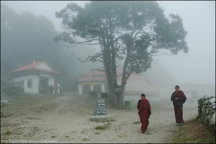 монахи в кумджунге