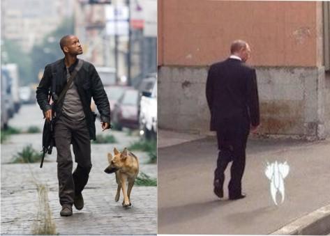 Путин-политика-кошка-вид-сзади-Уилл-Смит-861282