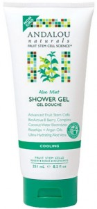 Andalou Naturals Shower Gel Aloe Mint