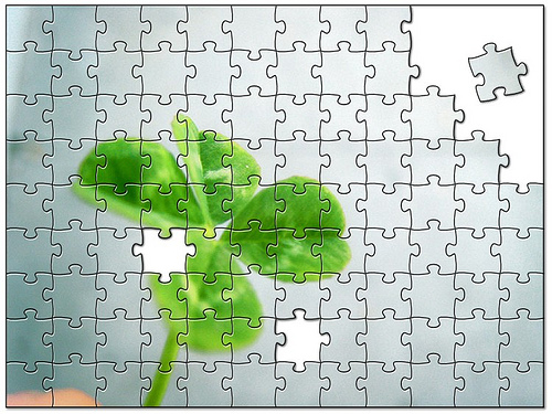 Clover Puzzle.jpg