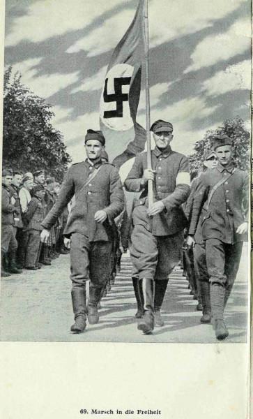 Поляки в рядах Вермахта и СС